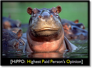 Why do Websites suck? Ask a Hippo!